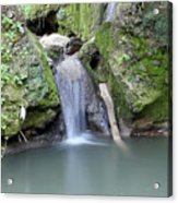 Nature Spring Scene Creek Acrylic Print