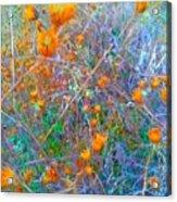 Nature Surprise  Acrylic Print
