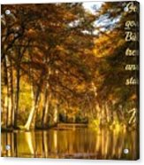 Nature501 Acrylic Print