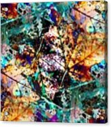 Natures Canvas Acrylic Print