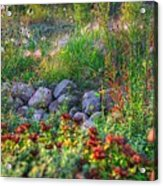 Natures Carpet Acrylic Print