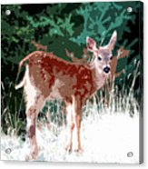 Natures Child Acrylic Print