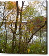 Nature's Expression-11 Acrylic Print