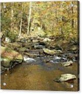 Nature's Finest 5 - Ricketts Glen Acrylic Print