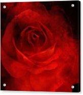Natures Flame Acrylic Print