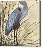Nature's Harmony Acrylic Print