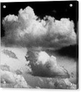 Nature's Mushroom Cloud Acrylic Print