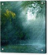 Nature's Mystique Acrylic Print