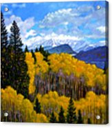 Natures Patterns - Rocky Mountains Acrylic Print