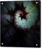 Nature's Rex Begonia Acrylic Print