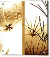 Nature's Window Acrylic Print