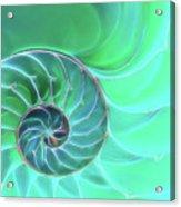 Nautilus Aqua Spiral Acrylic Print