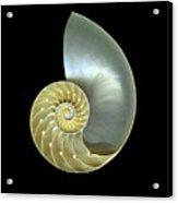 Nautilus Nr.1 Acrylic Print