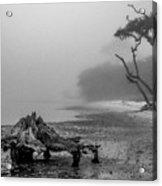 Naval Live Oaks Preserve No. 1 Acrylic Print