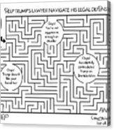 Navigate The Trump Legal Defense Acrylic Print