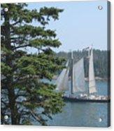Nearing Burnt Coat Harbor Acrylic Print