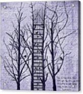 Neck Of The Woods II  Acrylic Print