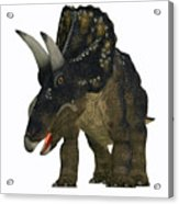 Nedoceratops On White Acrylic Print