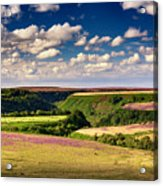 Needle Point From Saltersgate Acrylic Print