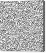 Negative Sponge Bone Confusion Acrylic Print