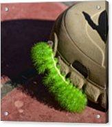 Neon Geen Caterpillar Loves Crocs Acrylic Print