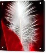 Neon Red Feather Acrylic Print