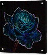 Neon Rose 3 Acrylic Print