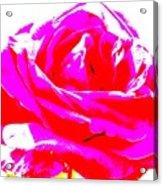 Neon Rose Acrylic Print