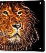 Neon Strong Proud Lion On Black Acrylic Print