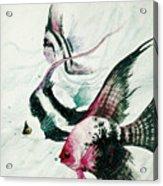 Neptunes Trio Acrylic Print