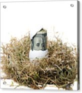 Nest Egg Acrylic Print