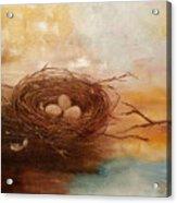 Nest Acrylic Print