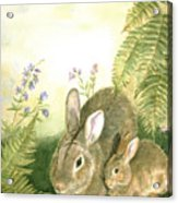 Nesting Bunnies Acrylic Print