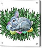 Nesting Easter Bunny Acrylic Print