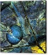 Network 2 Acrylic Print