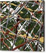 Network Acrylic Print