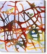 Neuron Acrylic Print by Mordecai Colodner