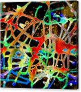 Neuron2 Acrylic Print by Mordecai Colodner