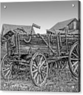 Nevada City Montana Freight Wagon Acrylic Print by Daniel Hagerman