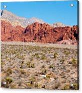 Nevada's Red Rocks Acrylic Print