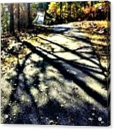 Neverending Path Acrylic Print