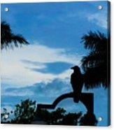 Nevermore In The Tropics Acrylic Print