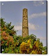 Nevis Sugar Mill II Acrylic Print