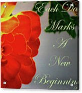 New Beginning Acrylic Print
