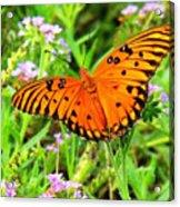 Windows From Heaven Orange Butterfly Acrylic Print