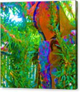 New Creations Acrylic Print by HollyWood Creation By linda zanini