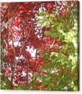 New England Autumn Globe Acrylic Print