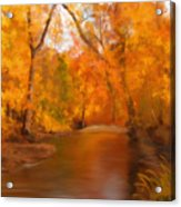 New England Autumn In The Woods Acrylic Print