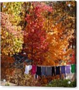 New England Color In October  Acrylic Print