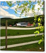 New England Farm Acrylic Print by Catherine Reusch Daley